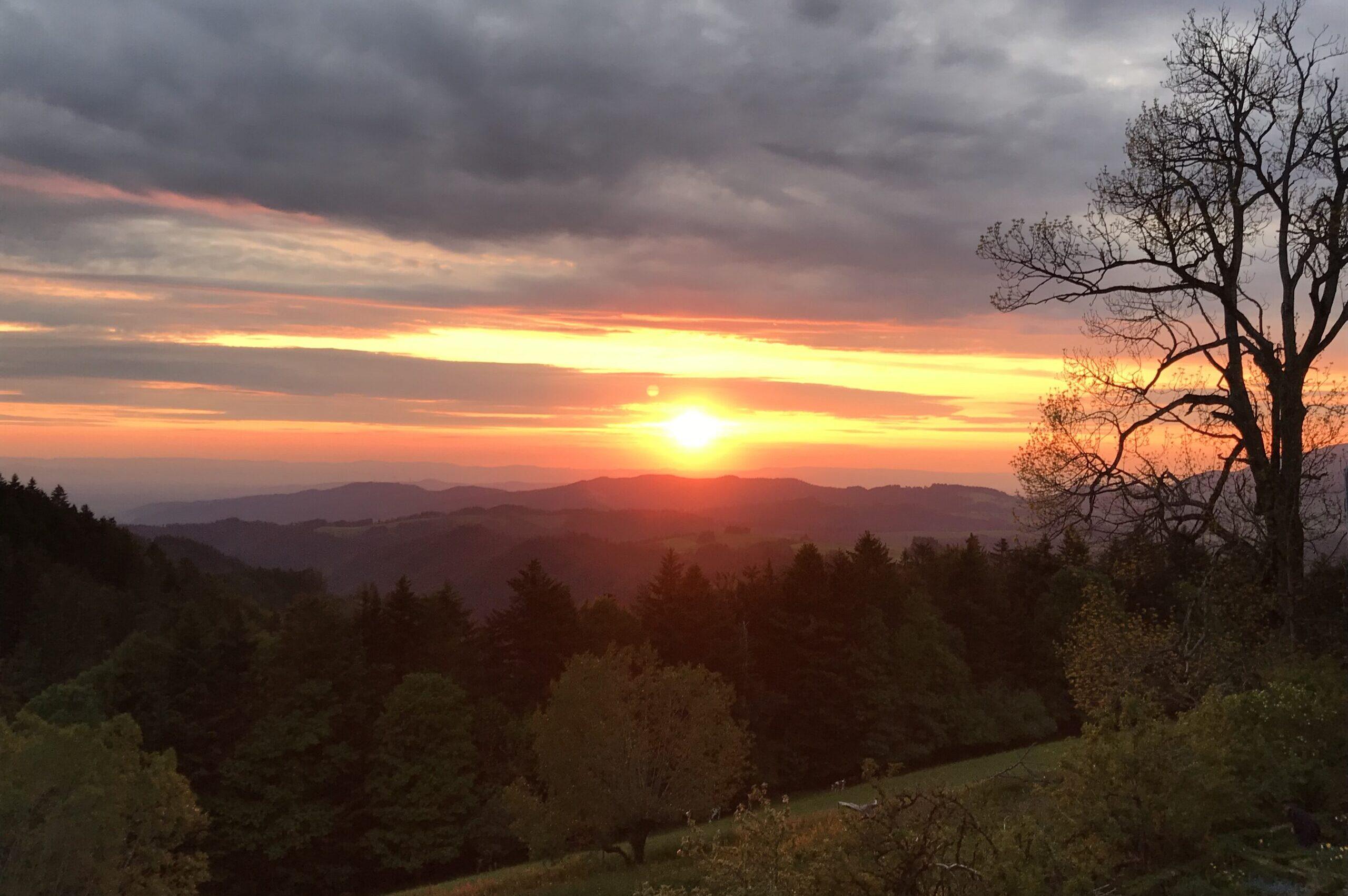 Sonnenuntergang am Lachenhäusle